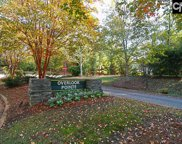 100 Pointe Overlook Drive, Chapin image