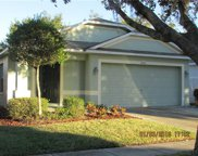 18145 Canal Pointe Street, Tampa image