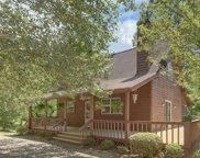 244 Deerwood Trail Road, Blairsville image