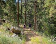 14433 Lot 7 Elk Creek Road, Pine image