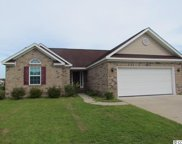 3021 Shallow Pond Dr., Conway image