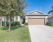13125 Royal Pines Avenue, Riverview image