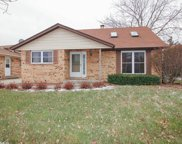 12842 Orchard Lane, Alsip image