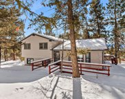 30572 Kings Valley, Conifer image