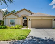 6801 Bluff Meadow Court, Wesley Chapel image