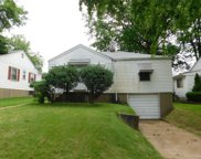 2033 Coleridge, St Louis image