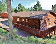 25058 Red Cloud Drive, Conifer image