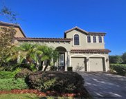 20342 Heritage Point Drive, Tampa image
