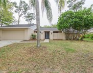 3172 Wessex Way, Clearwater image
