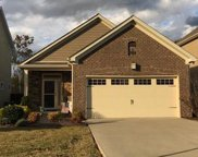 4973 Paddy Trce, Spring Hill image