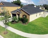 11910 Twilight Darner Place, Riverview image