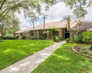 17917 Clear Lake Drive, Lutz image