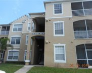 2301 Butterfly Palm Way Unit 202, Kissimmee image