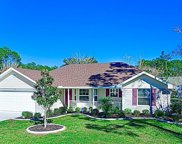 108 Birchwood Dr, Palm Coast image