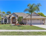 13459 Satinwood Court, Spring Hill image