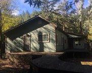 16676 Armstrong Woods Road, Guerneville image