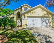 12331 Glenfield Avenue, Tampa image
