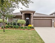 5325 Thornbush Drive, Fort Worth image
