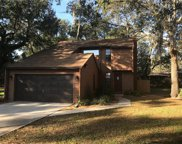 4808 Temple Heights Road, Tampa image