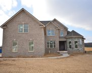 3026 Grunion Ln (353), Spring Hill image