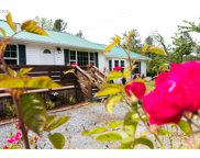 33006 LYNX HOLLOW  RD, Creswell image