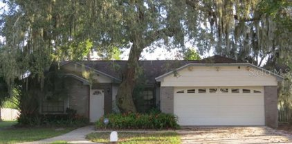 12123 Fruitwood Drive, Riverview