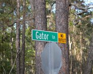 106 Gator  Lane, Beaufort image