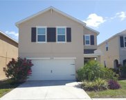 12208 Fawn Brindle Street, Riverview image