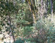 4560  PRETTY GOOD Road, Placerville image