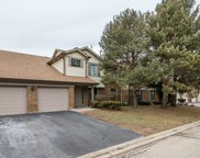 4222 North Pheasant Trail Court Unit 3, Arlington Heights image