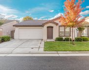 1619 Grey Bunny Drive, Roseville image