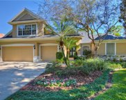 3506 Old Course Lane, Valrico image