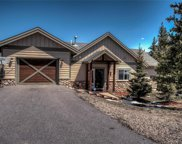 282 Fawn, Silverthorne image