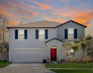 6780 Emerald Spring Loop, New Port Richey image