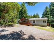 41998 HUMBUG  WAY, Port Orford image