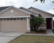 8431 Deer Chase Drive, Riverview image