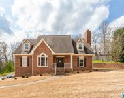 204 English Walnut Dr, Trussville image