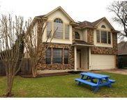 9312 Tea Rose Trl, Austin image
