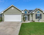 243 Hickory Springs Ct., Conway image