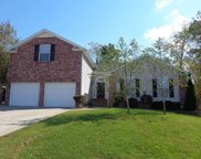 3707 Ivanora Drive, Spring Hill image