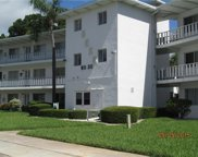 8525 111th Street Unit 205, Seminole image