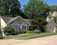 14446 White Birch Valley  Lane, Chesterfield image