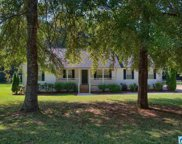 176 Maplewood Cir, Pell City image