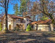 14295 Gale Ln, Whitmore image