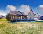 1211 Lewis Downs Dr, Christiana image