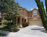 12937 Bosworth Avenue, Windermere image