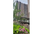 26 10th Street W Unit #1607, Saint Paul image