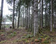 209 Crescent Beach Dr, Packwood image