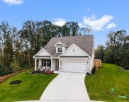 3392 Fall Branch Ln, Buford image
