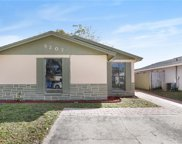 8207 Olivewood Place, Tampa image